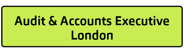 Audit & Accounts Executive - London